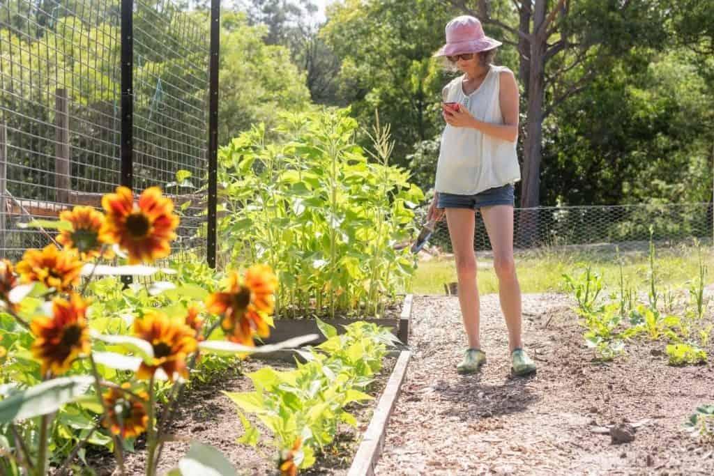 favorite gardening apps