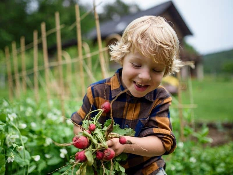 how to choose which plants to go in your child's garden