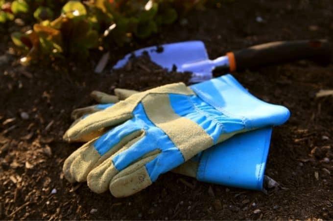 every gardener needs the essential tools